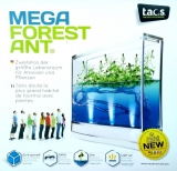 MEGA Forest Ant LED Antquarium